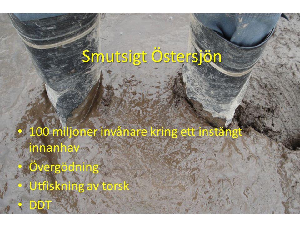 Smutsigt Östersjön 100 miljoner invånare kring ett instängt innanhav Övergödning Utfiskning av torsk DDT