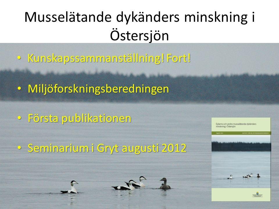 Musselätande dykänders minskning i Östersjön Kunskapssammanställning.