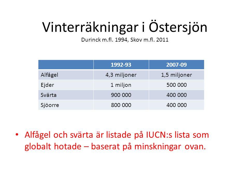 Vinterräkningar i Östersjön Durinck m.fl. 1994, Skov m.fl.