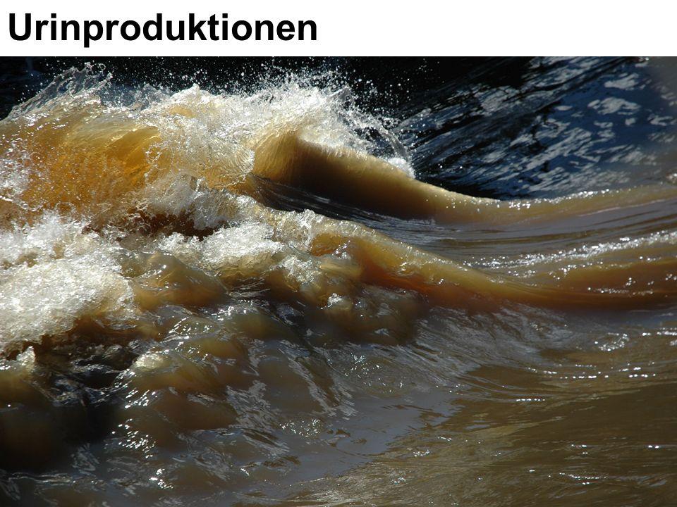 Urinproduktionen