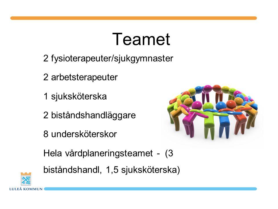 Teamet 2 fysioterapeuter/sjukgymnaster 2 arbetsterapeuter 1 sjuksköterska 2 biståndshandläggare 8 undersköterskor Hela vårdplaneringsteamet - (3 biståndshandl, 1,5 sjuksköterska)