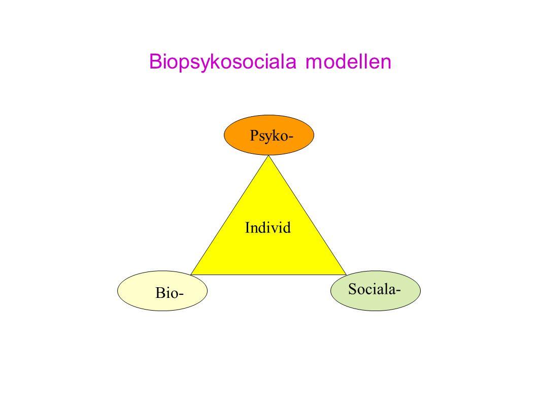 Biopsykosociala modellen Bio- Psyko- Sociala- Individ
