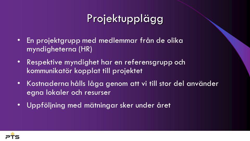 Projektupplägg En projektgrupp med medlemmar från de olika myndigheterna (HR) Respektive myndighet har en referensgrupp och kommunikatör kopplat till