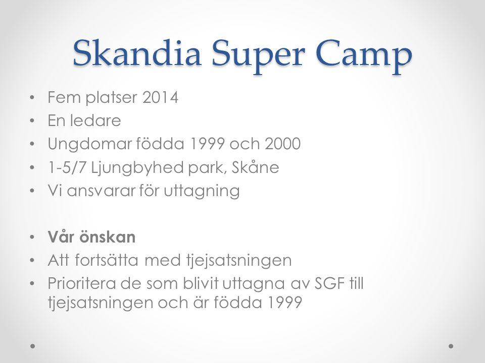 Skandia Super Camp Fem platser 2014 En ledare Ungdomar födda 1999 och 2000 1-5/7 Ljungbyhed park, Skåne Vi ansvarar för uttagning Vår önskan Att fortsätta med tjejsatsningen Prioritera de som blivit uttagna av SGF till tjejsatsningen och är födda 1999