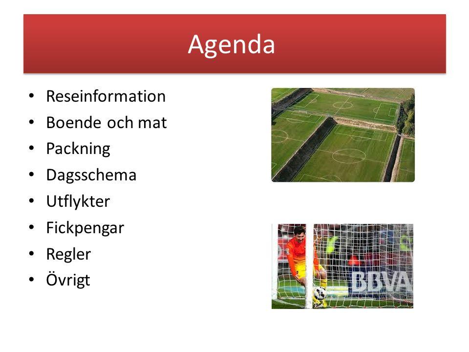 Agenda Reseinformation Boende och mat Packning Dagsschema Utflykter Fickpengar Regler Övrigt