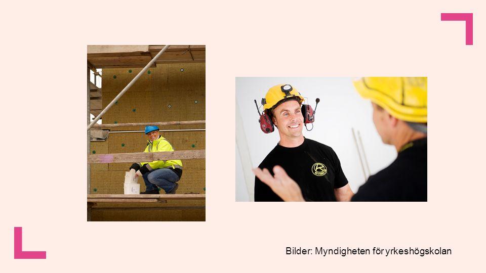 Övning: 120 myndighetsbilder Vilka personer och erfarenheter syns på bilderna.