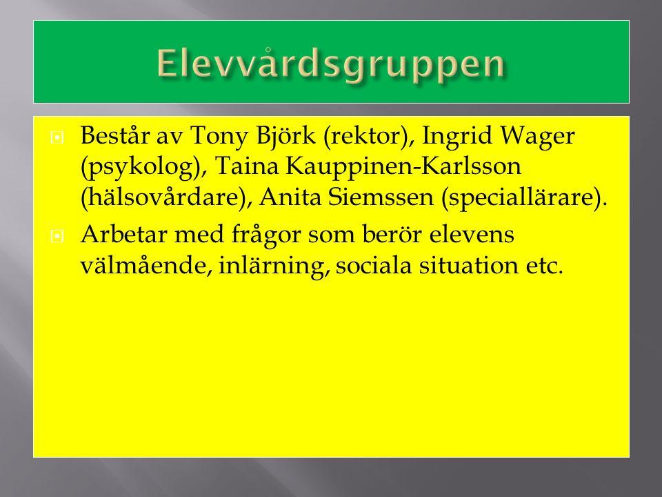  Består av Tony Björk (rektor), Ingrid Wager (psykolog), Taina Kauppinen-Karlsson (hälsovårdare), Anita Siemssen (speciallärare).  Arbetar med frågo