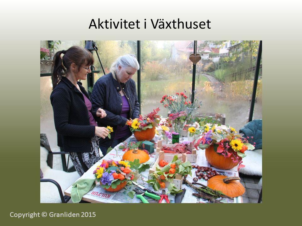 Aktivitet i Växthuset Copyright © Granliden 2015