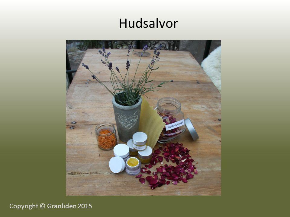 Hudsalvor Copyright © Granliden 2015