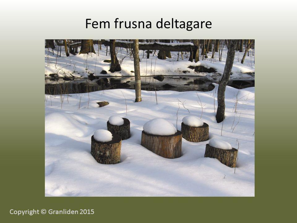 Fem frusna deltagare Copyright © Granliden 2015