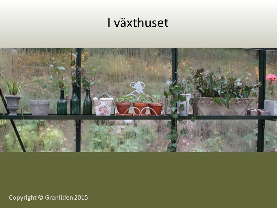 I växthuset Copyright © Granliden 2015