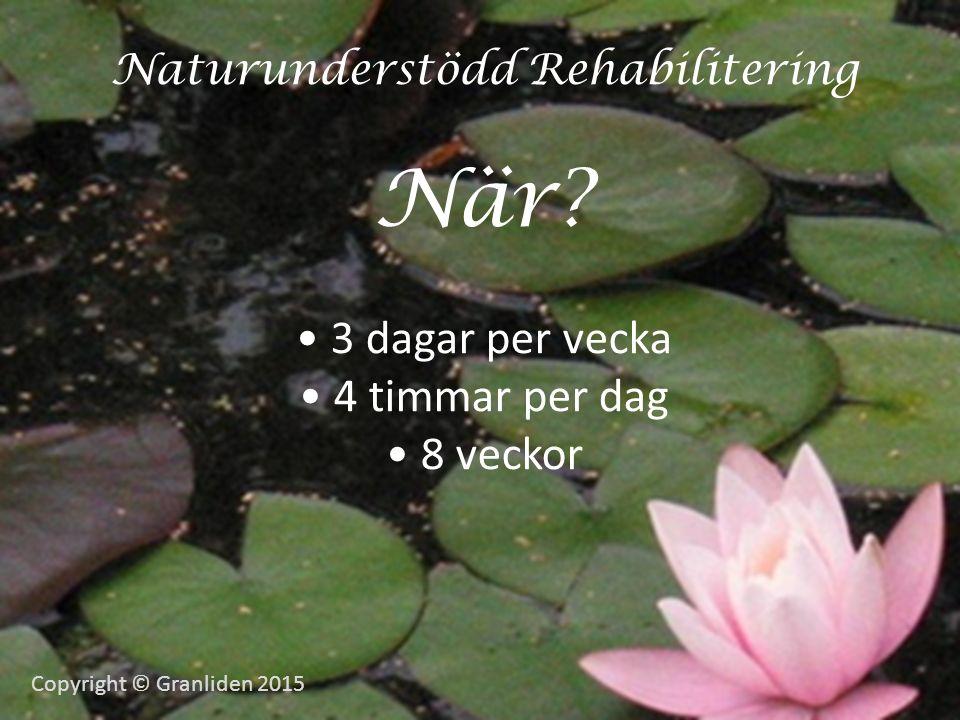 Naturunderstödd Rehabilitering När.