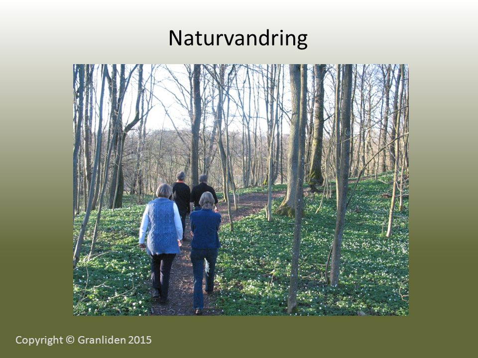 Naturvandring Copyright © Granliden 2015