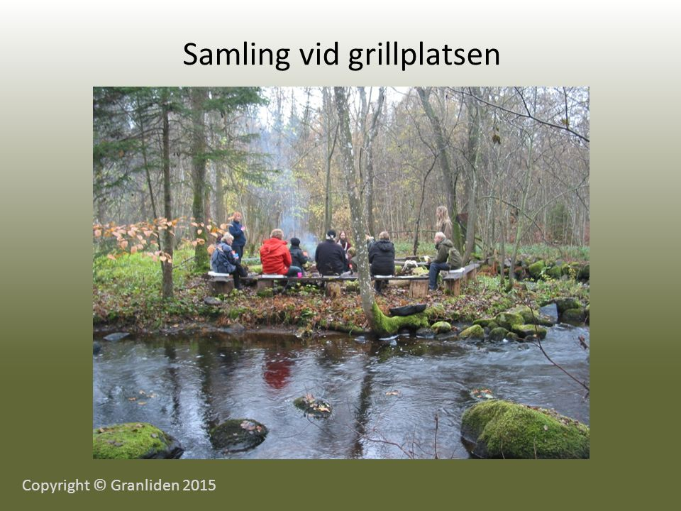 Samling vid grillplatsen Copyright © Granliden 2015