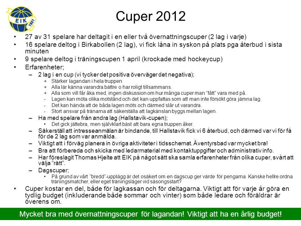 Sommar 2013 - Översikt mer detaljerad information i Förslag 2013 Diskussioner för olika alternativ har förts med P00 United och Thomas Hjelte.