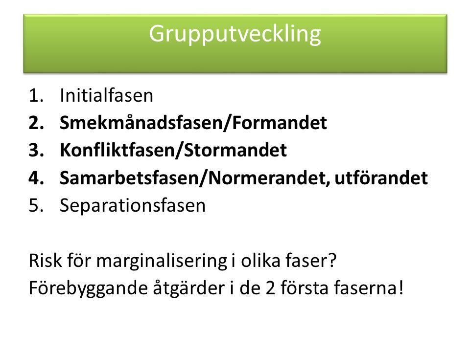 Grupputveckling 1.Initialfasen 2.Smekmånadsfasen/Formandet 3.Konfliktfasen/Stormandet 4.Samarbetsfasen/Normerandet, utförandet 5.Separationsfasen Risk för marginalisering i olika faser.