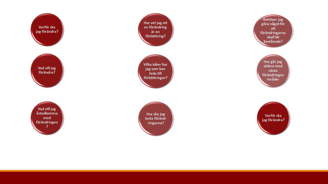 Målformuleringar Tanken är att man ska kunna se en röd tråd från den beskrivna problembilden till det önskvärda läget som konkretiseras i egna målformuleringar Mål