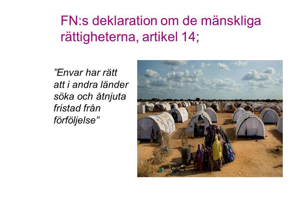 """FN:s deklaration om de mänskliga rättigheterna, artikel 14; """"Envar har rätt att i andra länder söka och åtnjuta fristad från förföljelse"""""""