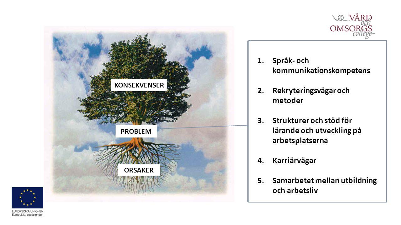 PROBLEM KONSEKVENSER ORSAKER 1.Språk- och kommunikationskompetens 2.Rekryteringsvägar och metoder 3.Strukturer och stöd för lärande och utveckling på arbetsplatserna 4.Karriärvägar 5.Samarbetet mellan utbildning och arbetsliv