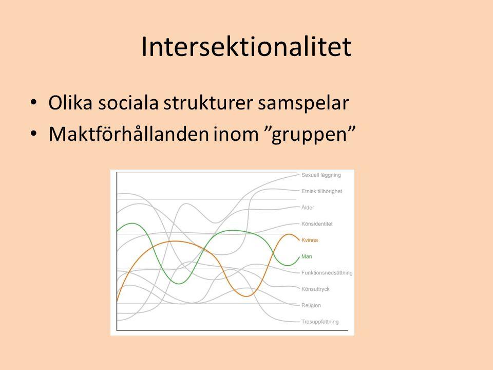 Intersektionalitet Olika sociala strukturer samspelar Maktförhållanden inom gruppen