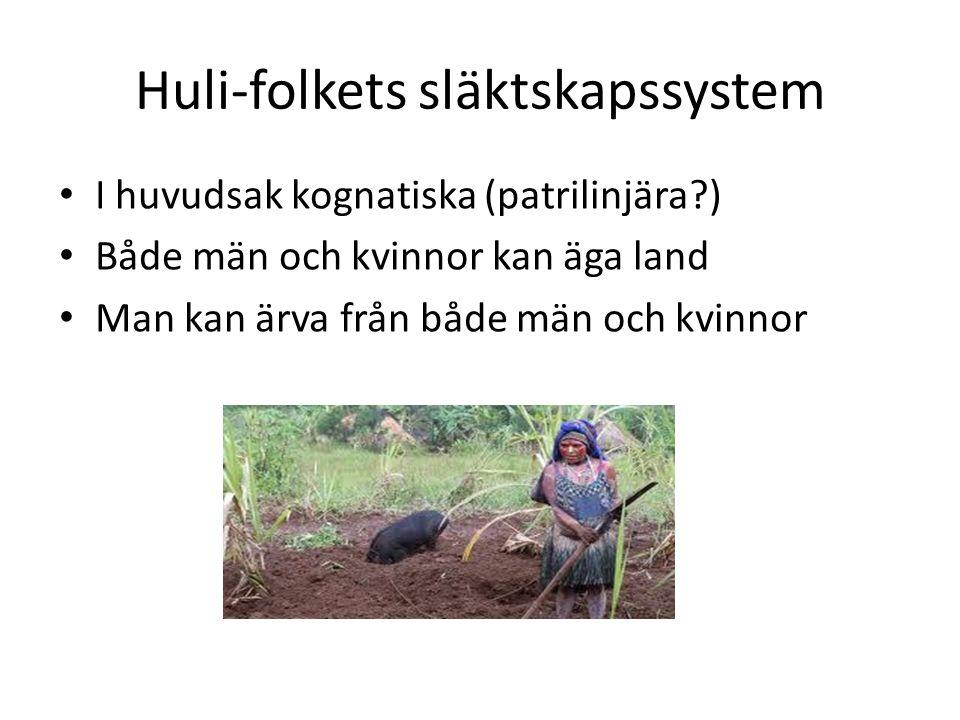Huli-folkets släktskapssystem I huvudsak kognatiska (patrilinjära?) Både män och kvinnor kan äga land Man kan ärva från både män och kvinnor