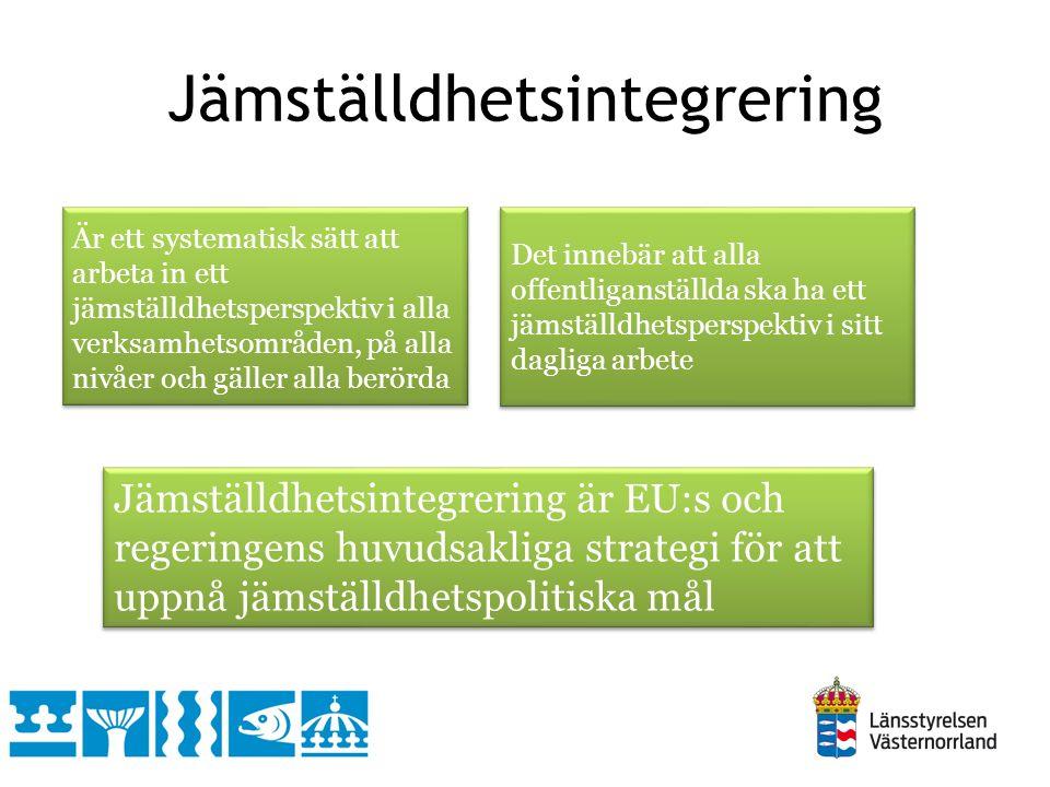 Jämställdhetsintegrering Är ett systematisk sätt att arbeta in ett jämställdhetsperspektiv i alla verksamhetsområden, på alla nivåer och gäller alla berörda Det innebär att alla offentliganställda ska ha ett jämställdhetsperspektiv i sitt dagliga arbete Jämställdhetsintegrering är EU:s och regeringens huvudsakliga strategi för att uppnå jämställdhetspolitiska mål