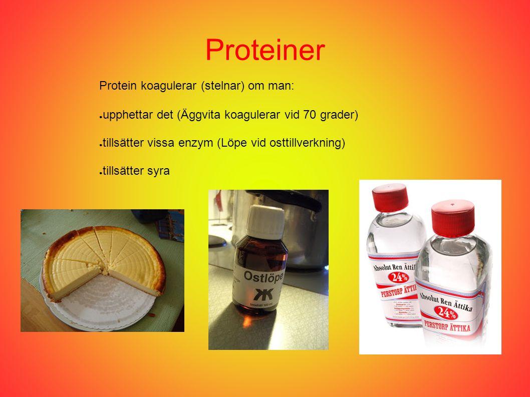 Proteiner Protein koagulerar (stelnar) om man: ● upphettar det (Äggvita koagulerar vid 70 grader) ● tillsätter vissa enzym (Löpe vid osttillverkning) ● tillsätter syra
