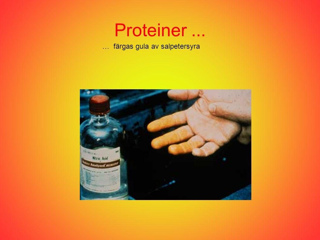Proteiner... … färgas gula av salpetersyra
