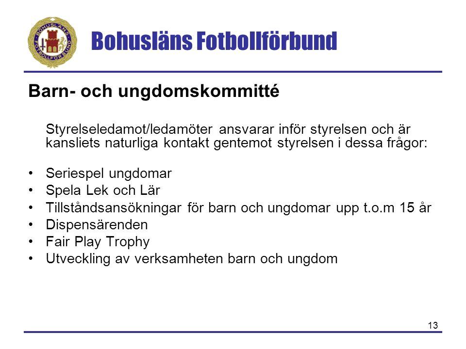 Bohusläns Fotbollförbund 13 Barn- och ungdomskommitté Styrelseledamot/ledamöter ansvarar inför styrelsen och är kansliets naturliga kontakt gentemot s