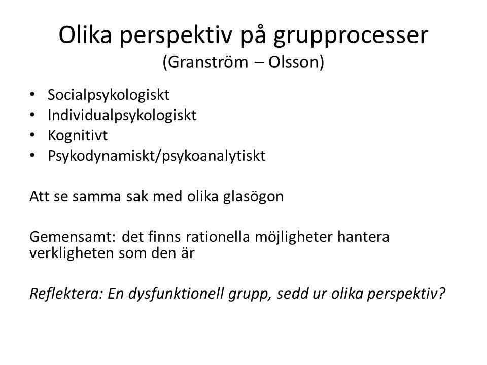 Olika perspektiv på grupprocesser (Granström – Olsson) Socialpsykologiskt Individualpsykologiskt Kognitivt Psykodynamiskt/psykoanalytiskt Att se samma sak med olika glasögon Gemensamt: det finns rationella möjligheter hantera verkligheten som den är Reflektera: En dysfunktionell grupp, sedd ur olika perspektiv