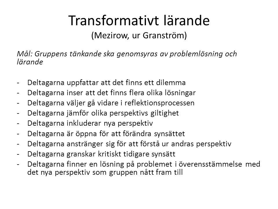 Transformativt lärande (Mezirow, ur Granström) Mål: Gruppens tänkande ska genomsyras av problemlösning och lärande -Deltagarna uppfattar att det finns ett dilemma -Deltagarna inser att det finns flera olika lösningar -Deltagarna väljer gå vidare i reflektionsprocessen -Deltagarna jämför olika perspektivs giltighet -Deltagarna inkluderar nya perspektiv -Deltagarna är öppna för att förändra synsättet -Deltagarna anstränger sig för att förstå ur andras perspektiv -Deltagarna granskar kritiskt tidigare synsätt -Deltagarna finner en lösning på problemet i överensstämmelse med det nya perspektiv som gruppen nått fram till