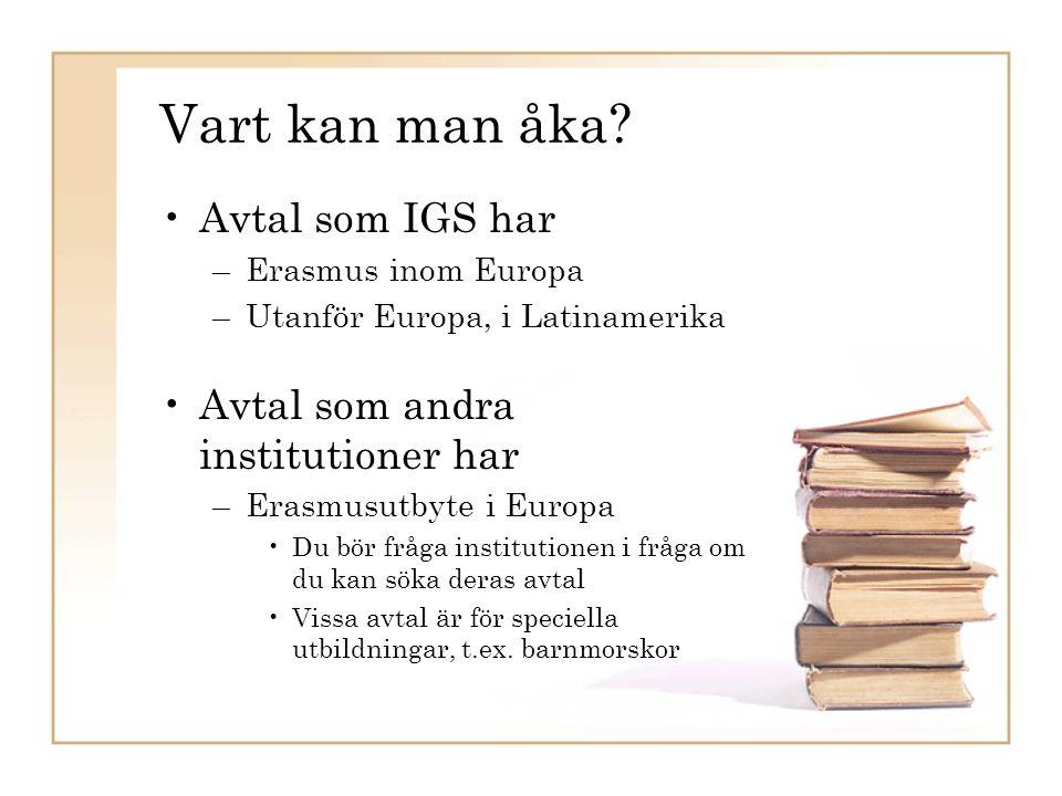 UtbytesstudierUtbytesstudier vid IGS IGS Erasmus-avtal inom Europa ( Erasmus-stipendier) –Toulouse, Frankrike –Dublin, Irland –Lecce, Italien –Palermo, Italien –Madrid, Spanien –Salamanca, Spanien –Istanbul, Turkiet