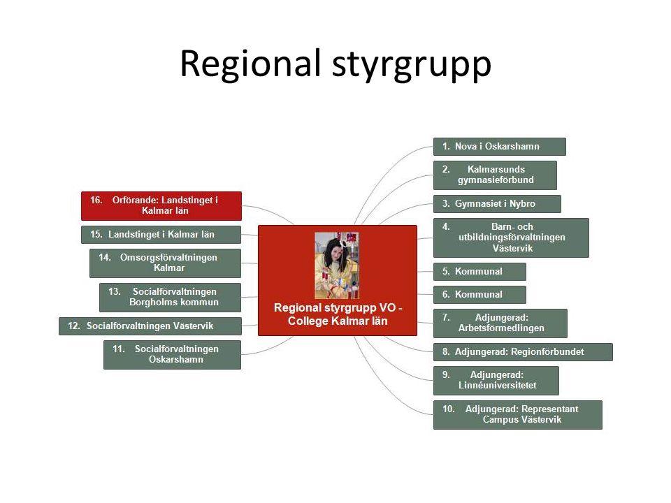 Regional styrgrupp