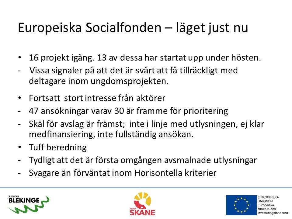 Europeiska Socialfonden – läget just nu 16 projekt igång. 13 av dessa har startat upp under hösten. - Vissa signaler på att det är svårt att få tillrä
