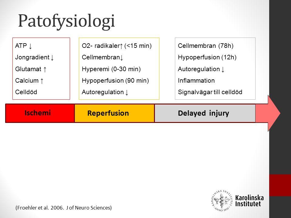 Patofysiologi Delayed injury Ischemi Reperfusion ATP ↓ Jongradient ↓ Glutamat ↑ Calcium ↑ Celldöd O2- radikaler↑ (<15 min) Cellmembran↓ Hyperemi (0-30 min) Hypoperfusion (90 min) Autoregulation ↓ Cellmembran (78h) Hypoperfusion (12h) Autoregulation ↓ Inflammation Signalvägar till celldöd (Froehler et al.
