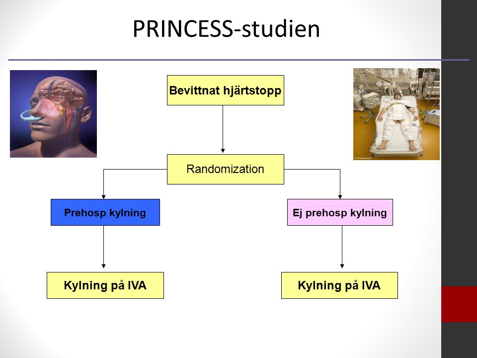 Bevittnat hjärtstopp Randomization Ej prehosp kylningPrehosp kylning Kylning på IVA PRINCESS-studien