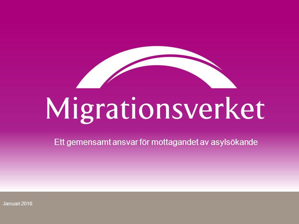 Ett gemensamt ansvar för mottagandet av asylsökande Januari 2016