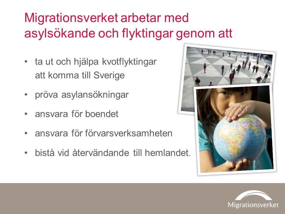 Migrationsverket arbetar med asylsökande och flyktingar genom att ta ut och hjälpa kvotflyktingar att komma till Sverige pröva asylansökningar ansvara för boendet ansvara för förvarsverksamheten bistå vid återvändande till hemlandet.