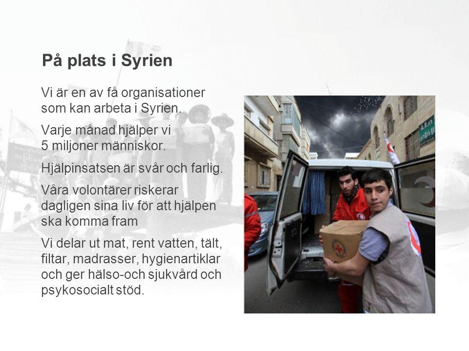 Vi är en av få organisationer som kan arbeta i Syrien.