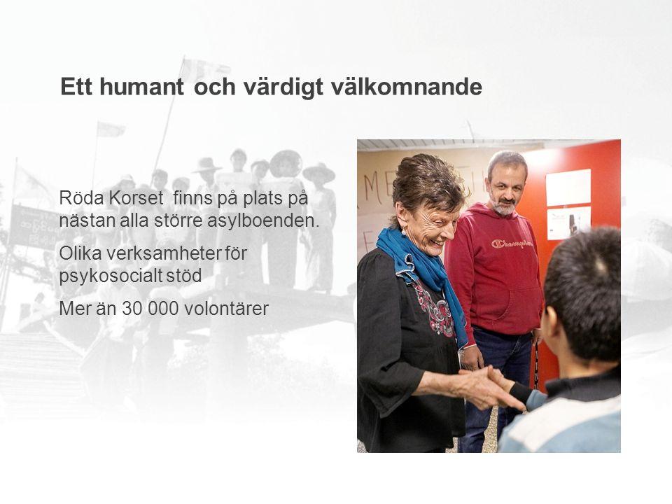 Röda Korset finns på plats på nästan alla större asylboenden.