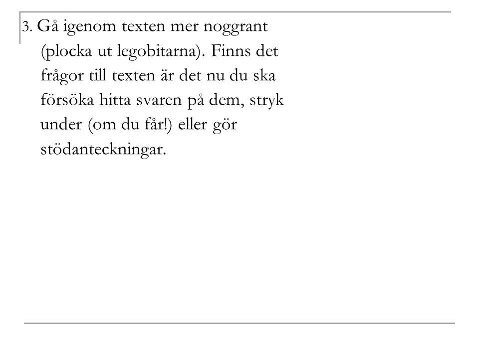 3. Gå igenom texten mer noggrant (plocka ut legobitarna).