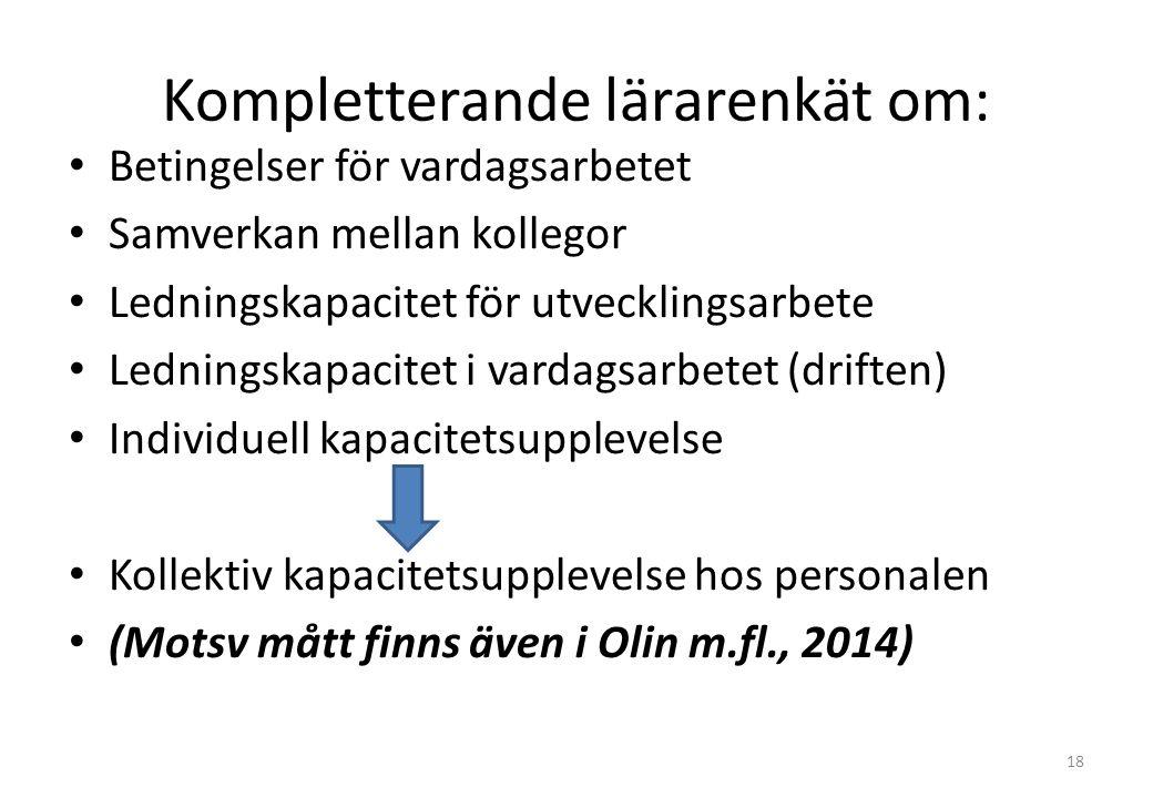 Kompletterande lärarenkät om: Betingelser för vardagsarbetet Samverkan mellan kollegor Ledningskapacitet för utvecklingsarbete Ledningskapacitet i vardagsarbetet (driften) Individuell kapacitetsupplevelse Kollektiv kapacitetsupplevelse hos personalen (Motsv mått finns även i Olin m.fl., 2014) 18