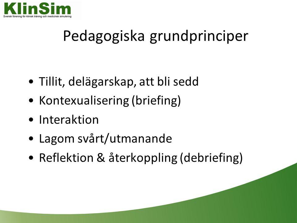 Pedagogiska grundprinciper Tillit, delägarskap, att bli sedd Kontexualisering (briefing) Interaktion Lagom svårt/utmanande Reflektion & återkoppling (debriefing)