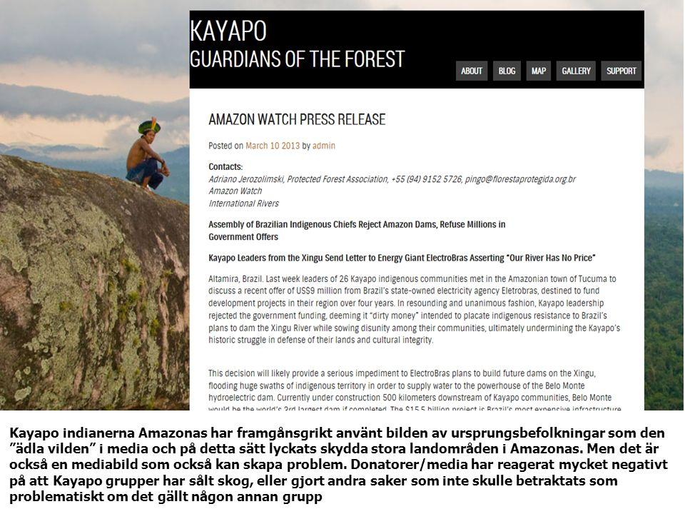 Kayapo indianerna Amazonas har framgånsgrikt använt bilden av ursprungsbefolkningar som den ädla vilden i media och på detta sätt lyckats skydda stora landområden i Amazonas.