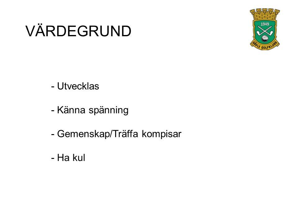 VÄRDEGRUND - Utvecklas - Känna spänning - Gemenskap/Träffa kompisar - Ha kul