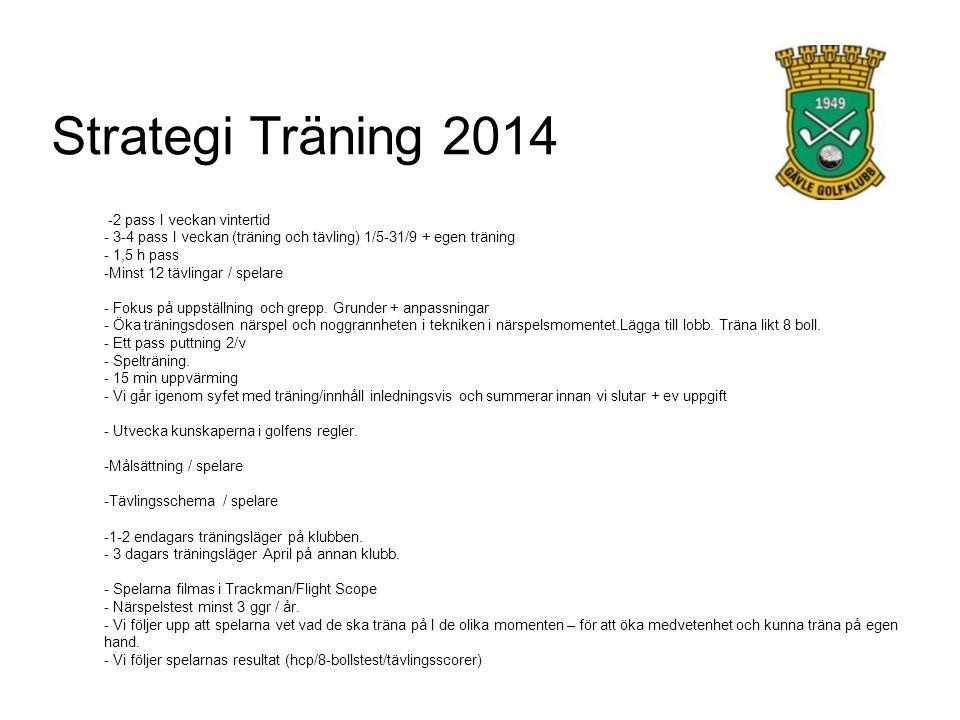 Strategi Träning 2014 -2 pass I veckan vintertid - 3-4 pass I veckan (träning och tävling) 1/5-31/9 + egen träning - 1,5 h pass -Minst 12 tävlingar / spelare - Fokus på uppställning och grepp.