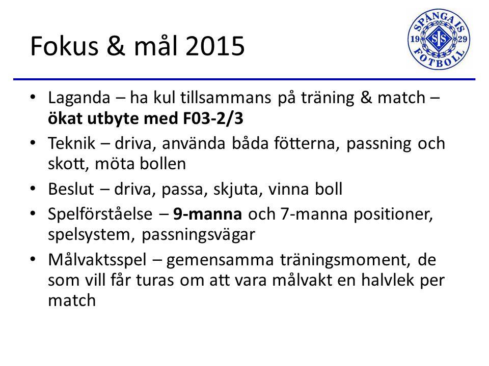 2014 - Summering Från 17 till 21 spelare – Ella, Ines, Pelin och Tuva började 63 träningar 5 målvaktsträningar 27 Sanktan-matcher 3 cuper – totalt 16 cupmatcher 2 Bollflickor-matcher Många sköna fotbollsminnen!