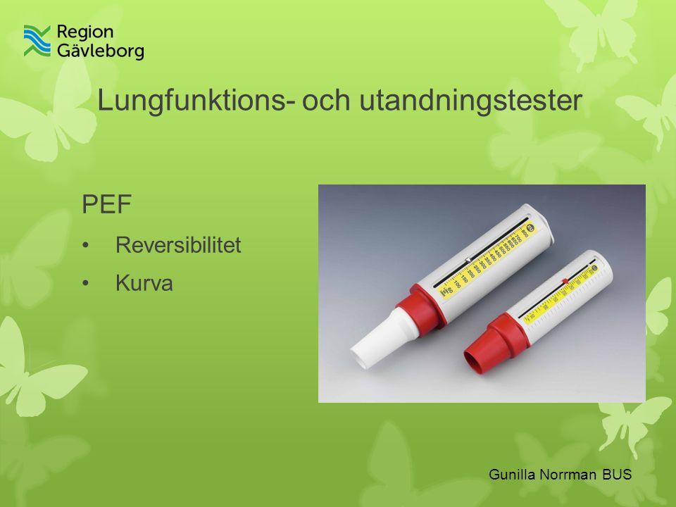 Gunilla Norrman BUS Lungfunktions- och utandningstester PEF Reversibilitet Kurva