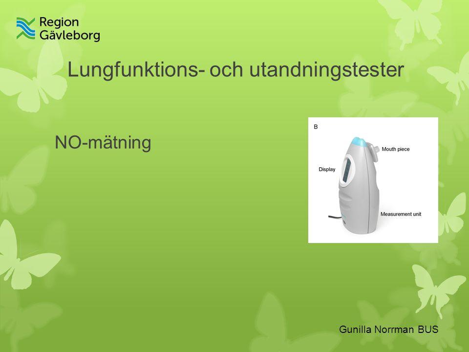 Gunilla Norrman BUS Lungfunktions- och utandningstester NO-mätning