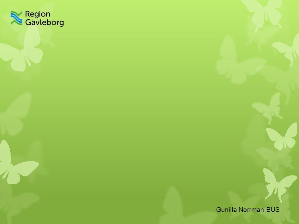Gunilla Norrman BUS